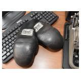 Child Size Boxing Gloves