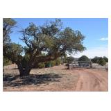 CONCHO ARIZONA LAND AUCTION! OVER 76 ACRES OF RANCH LAND, HOUSE WITH SOLAR, WATER WELL AND TRACTOR