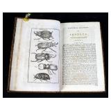 The Natural History Of Insects Copper Plate Engravings