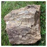 """Large Petrified Wood Rock, Approximately 15"""" x 13"""""""