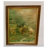 Framed Print - Cows Grazing