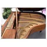 VIEW 5 INSIDE BABY GRANDE CHICKERING PIANO
