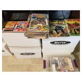 Comics (There are probably 100+ Boxes)