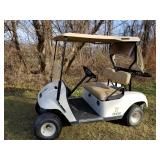 Golf Cart Auction