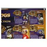 2006 Minnesota Vikings Star Tribune Pin Collection Set