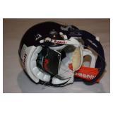 Minnesota Vikings Riddell Authentic Mini Helmet