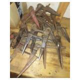 Teeth & cutting blades.
