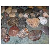 Assortment of Unique Rocks