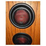 Polk Momo Floor Speakers