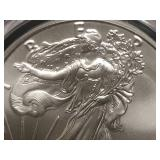 2017 W 1 oz Liberty Silver Coin MS70
