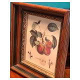 Vintage Painted Box Paired with Two Vintage Framed Fruit Motif Pictures