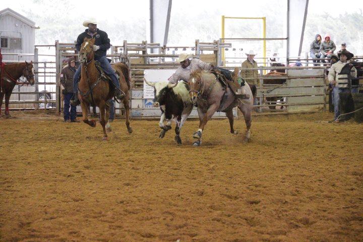 Rodeo Calendar 2016 2017 Find The Best Rodeos Everfest