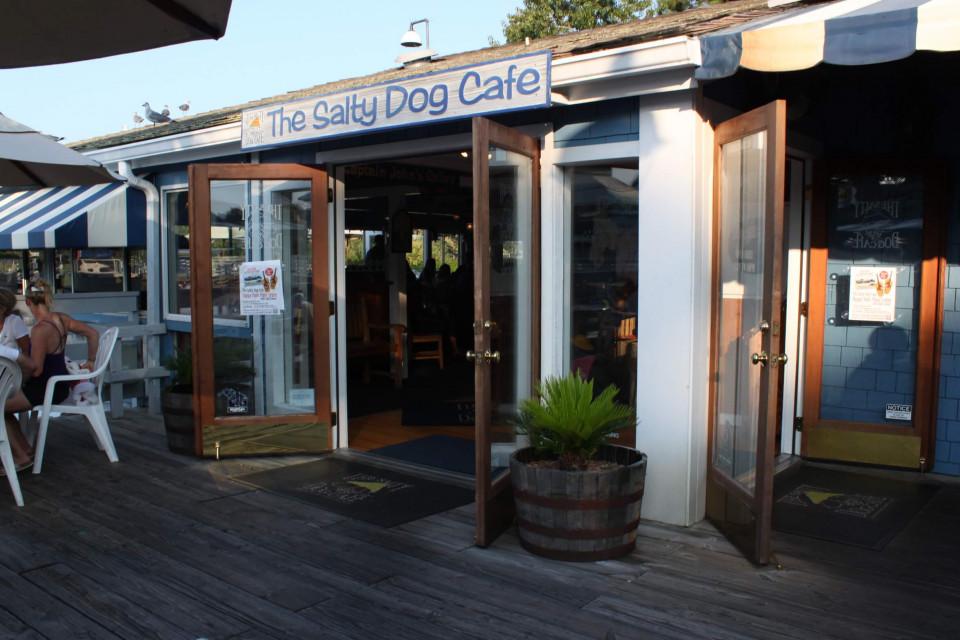 Salty dog cafe logo
