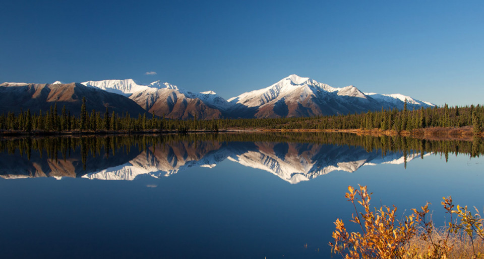 Denali National Park, Alaska logo