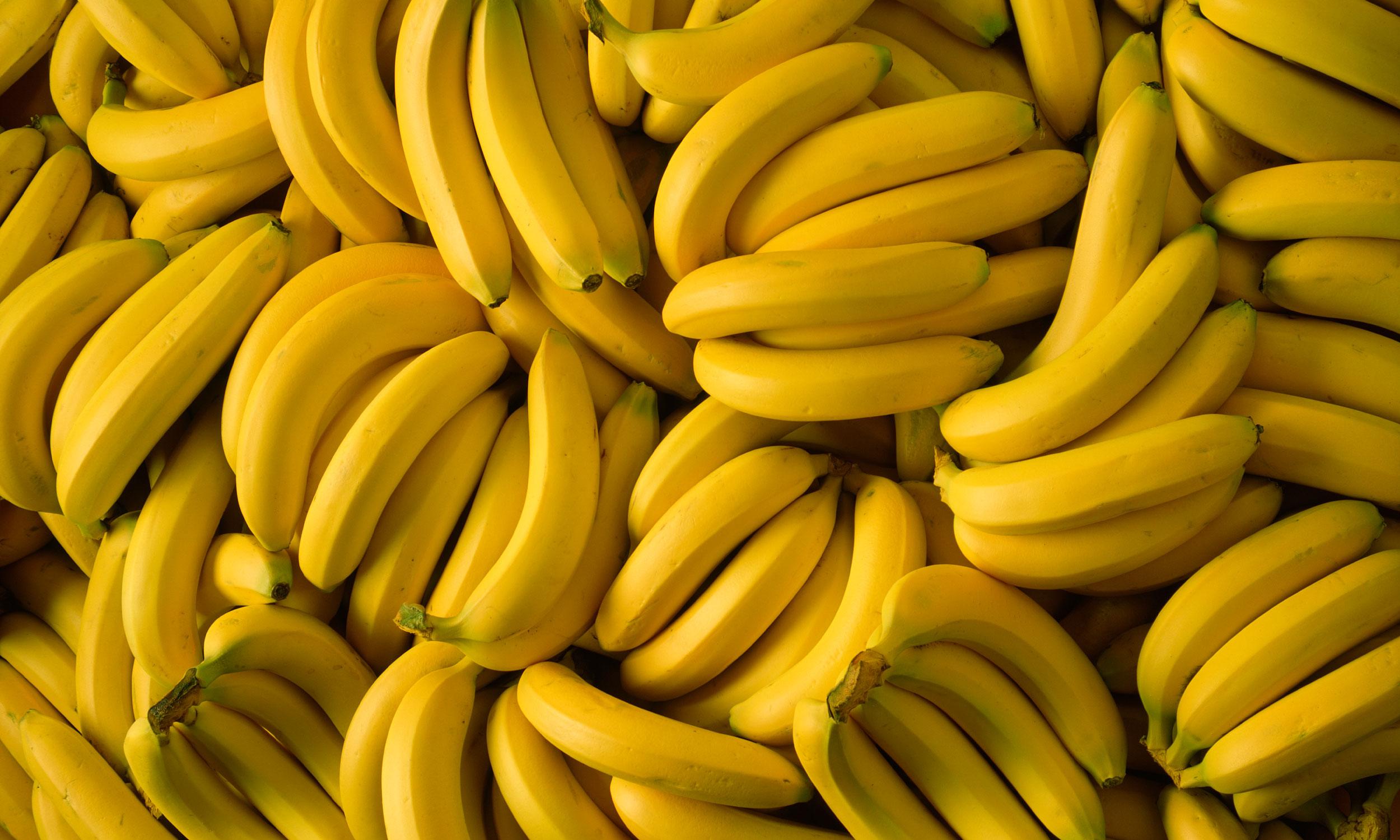 Cavendish banana - Wikipedia