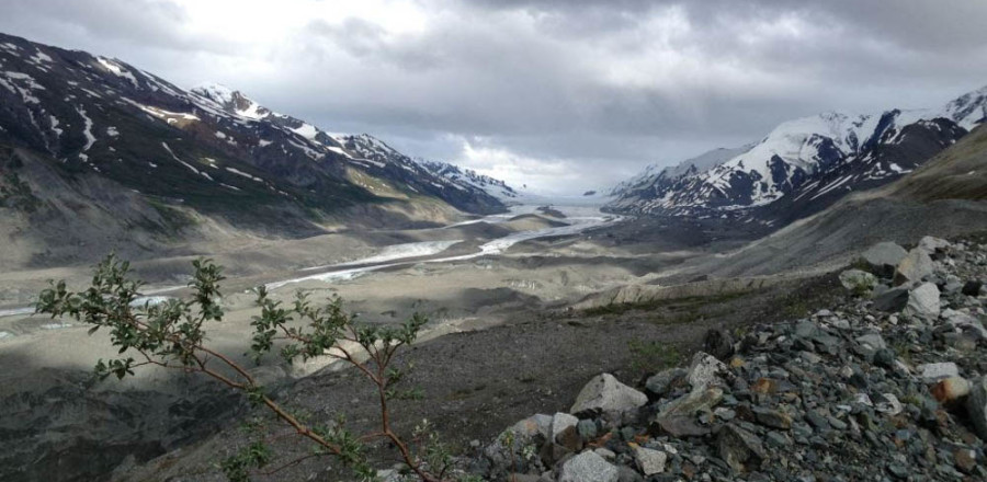 Canwell Glacier Trip Report