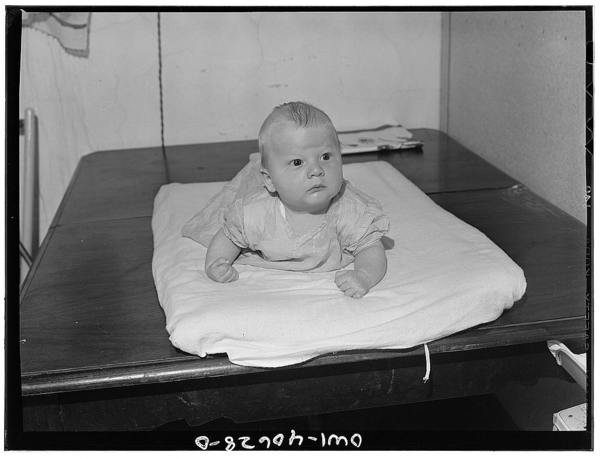 Washington, D.C. Joey, eight weeks old son of Hugh Massman, a student at the Naval Air Station