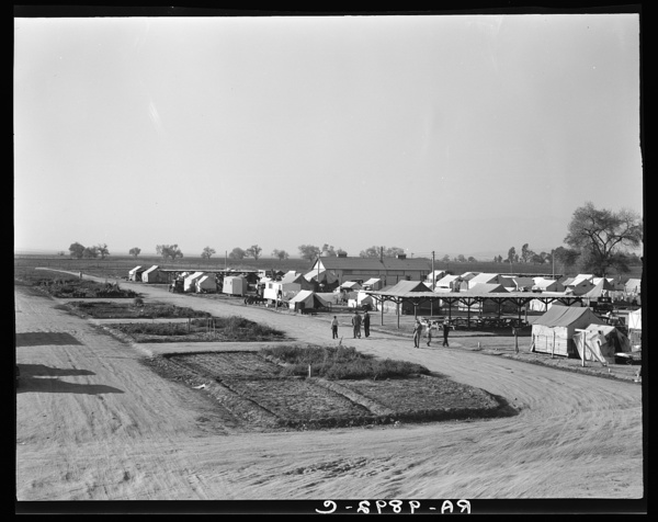 View of Kern County migrant camp showing community garden plots. California