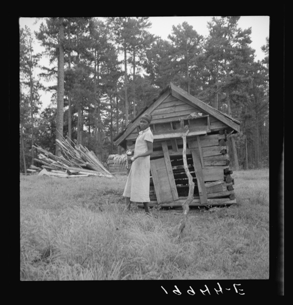 Tobacco sharecropper's daughter getting eggs from hen's nest in the henhouse. Enclosure for the pig is just beyond under the pine trees. Person County, North Carolina