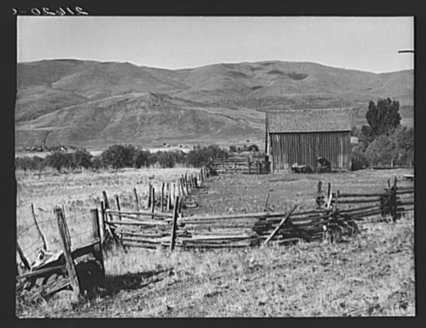 Farmyard in Squaw Creek Valley. Ola self-help sawmill co-op. Gem County, Idaho. Old wagon and buggy against the barn was used for mail until 1921.  See general caption 48