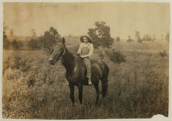 Bush driving horse home. See labels 4389-4393.  Location: Clark Co.--Winchester, Kentucky  /     Lewis W. Hine.