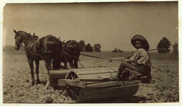 Harry Dewitt driving a roller on his father's farm. See report.  Location: West Point vicinity, Kentucky.     /       L.W. Hine.