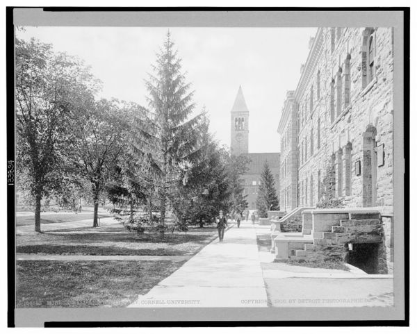 Morrill Hall and the Library, Cornell University