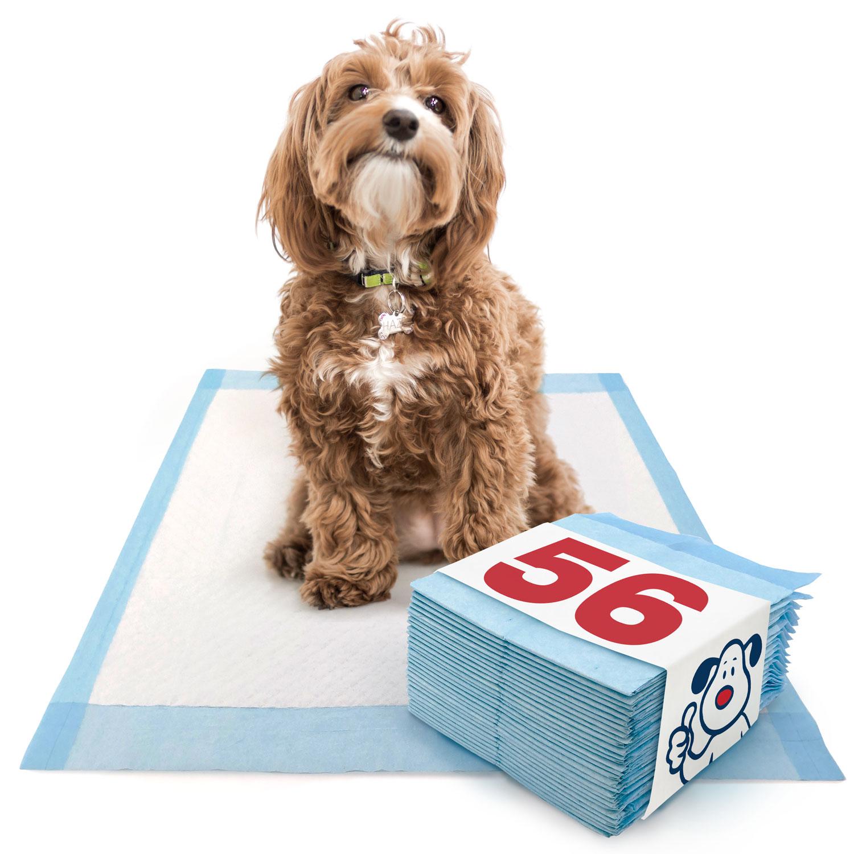 ValuePad Puppy Pads, Medium 23x24 Inch, Economy, 56 Count