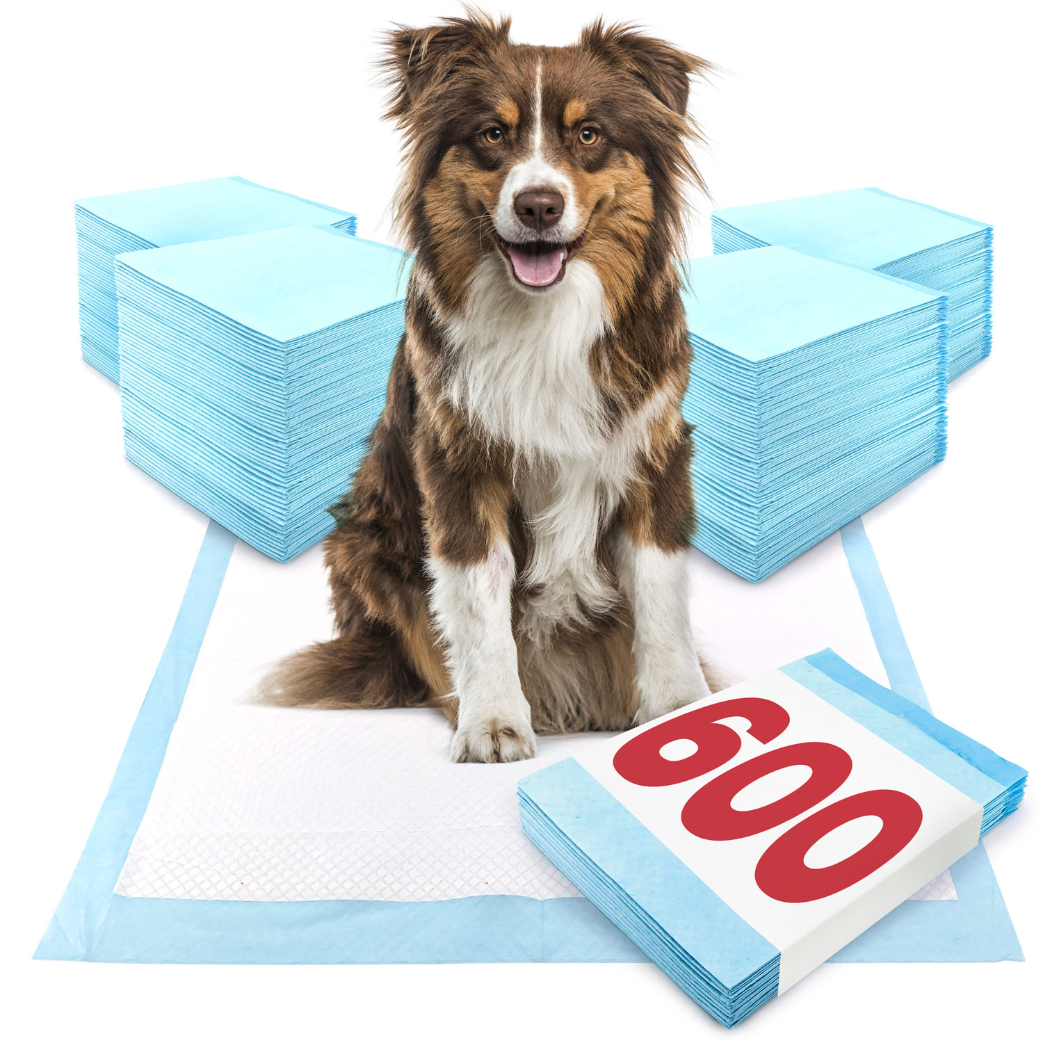 ValuePad Puppy Pads, Large 28x30 Inch, 600 Count