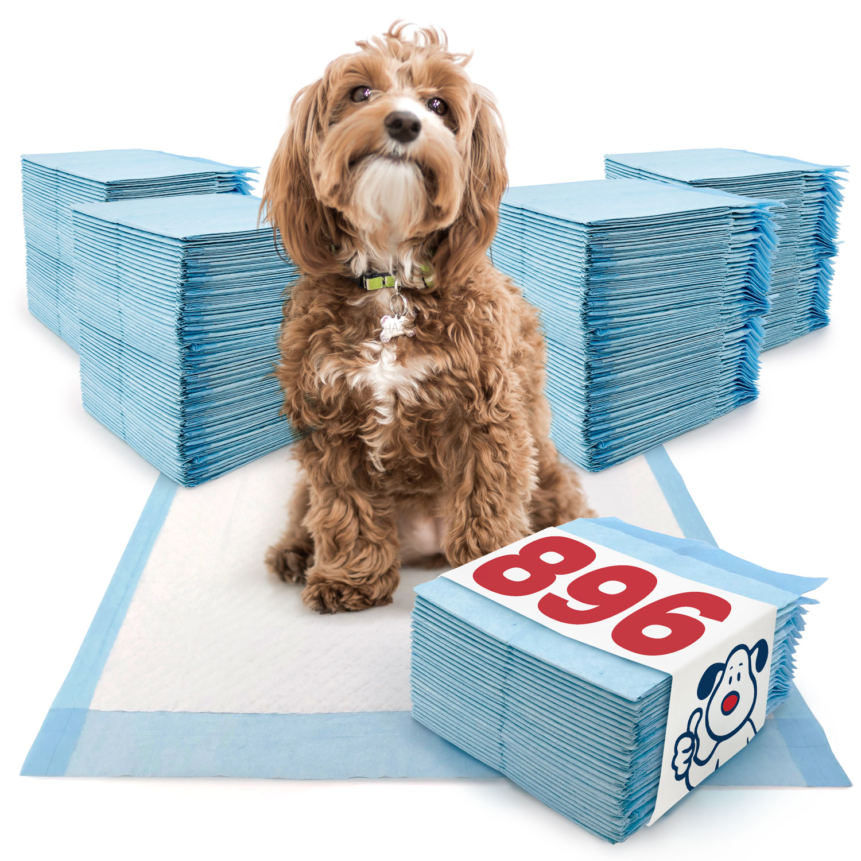 ValuePad Puppy Pads, Medium 23x24 Inch, Economy, 896 Count