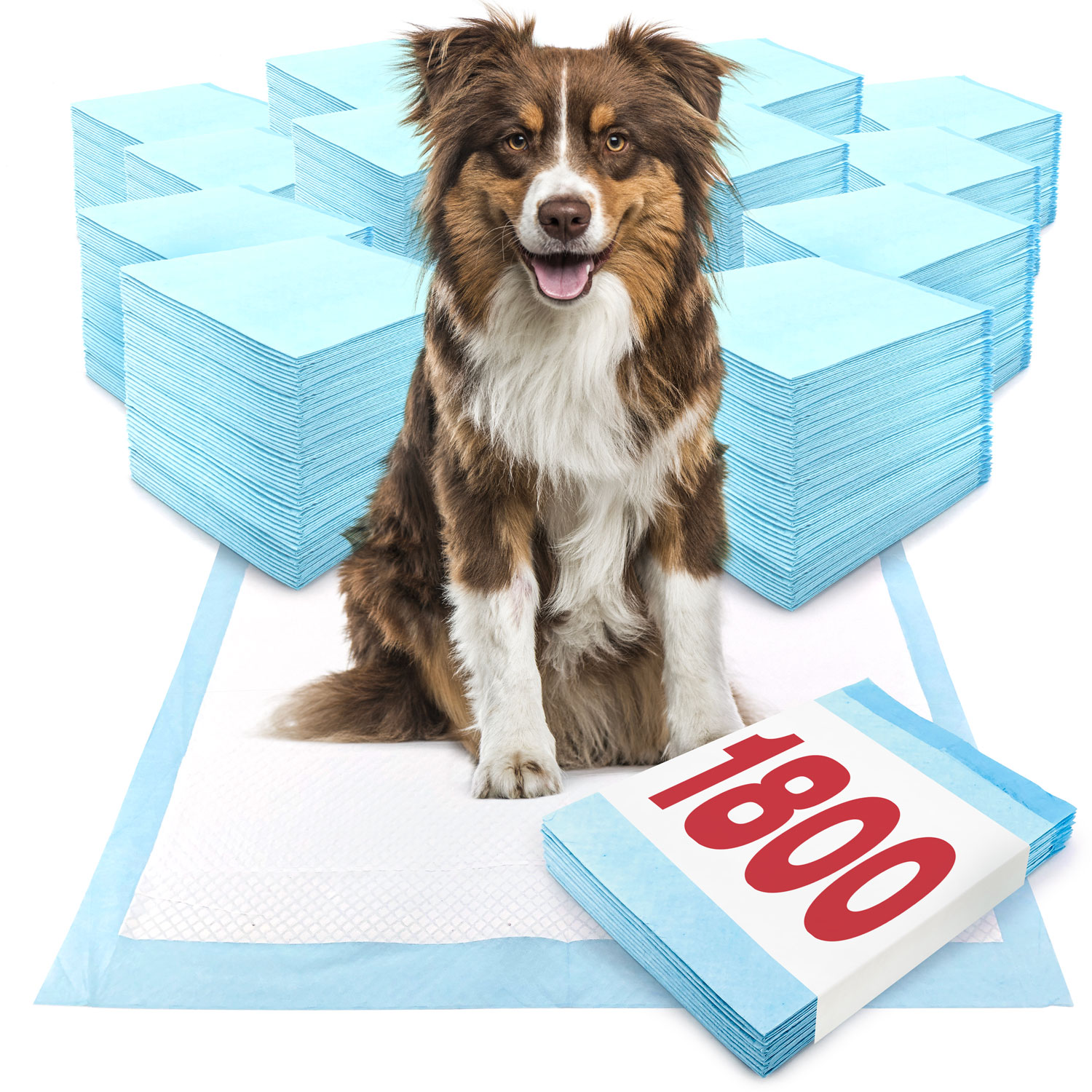 ValuePad Puppy Pads, Large 28x30 Inch, 1800 Count