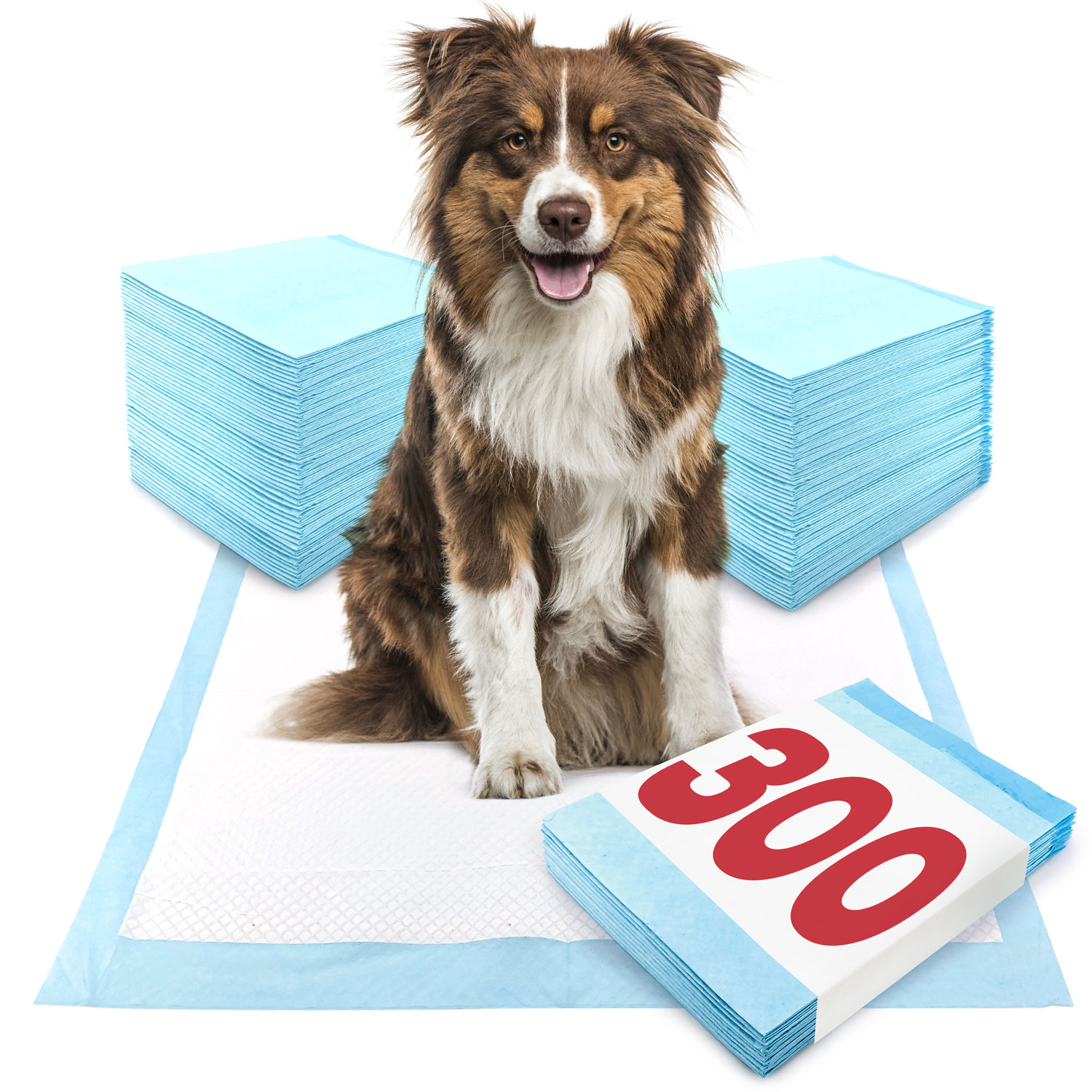 ValuePad Puppy Pads, Large 28x30 Inch, 300 Count