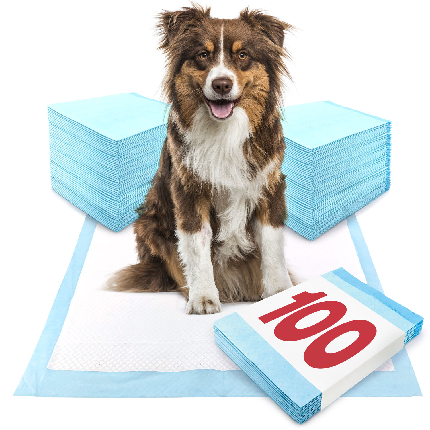 ValuePad Puppy Pads, Large 28x30 Inch, 100 Count