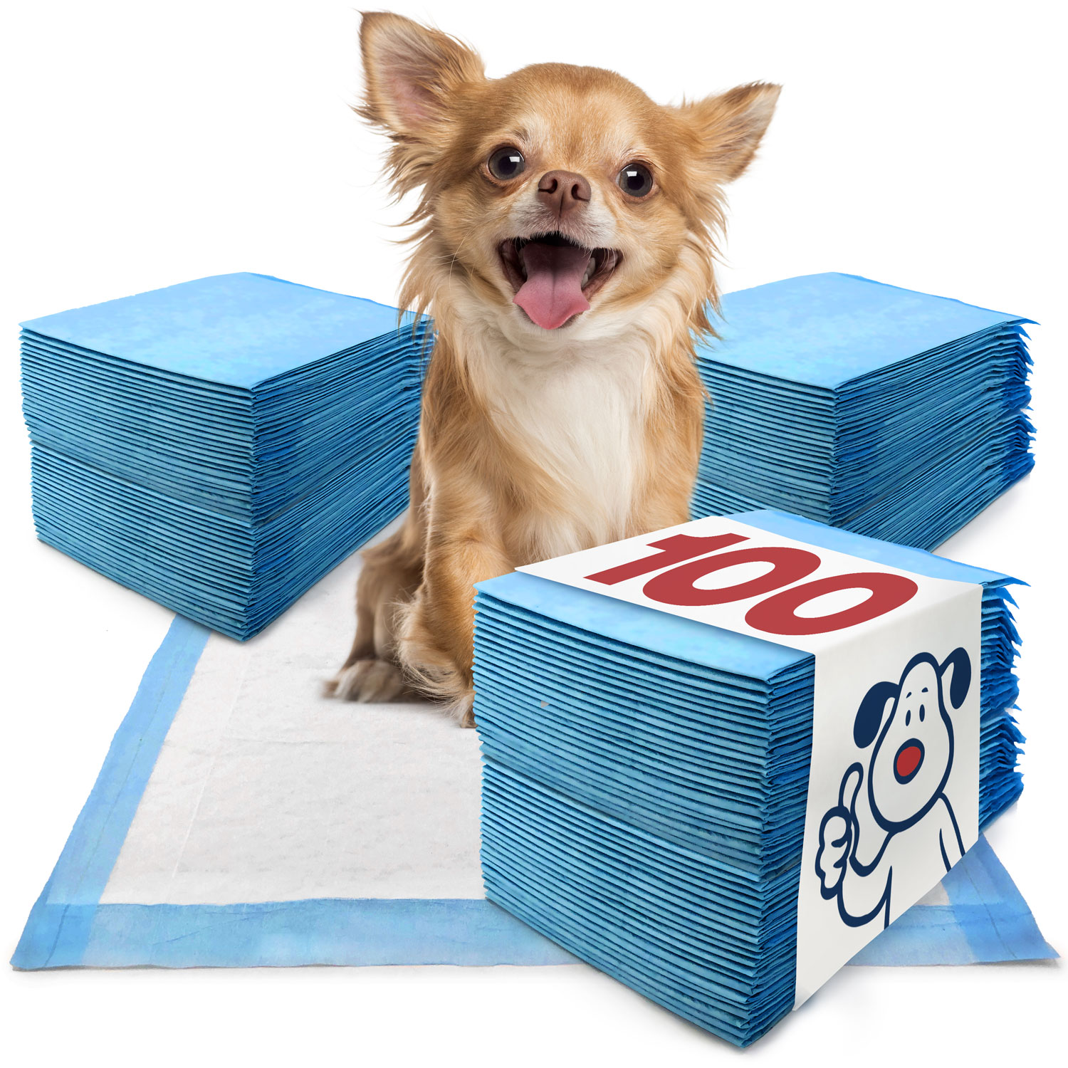 ValuePad Puppy Pads, Small 17x24 Inch, 100 Count