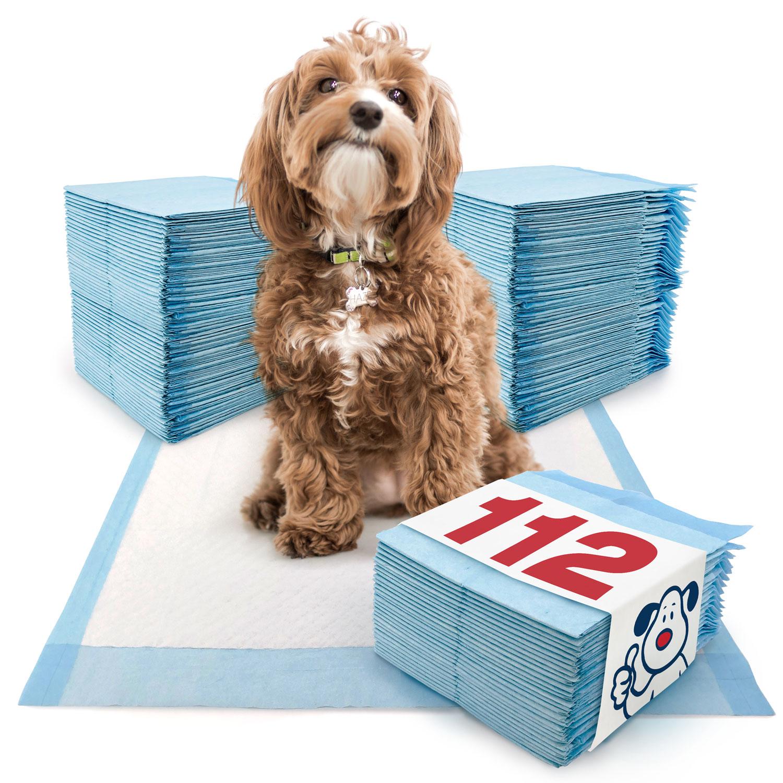 ValuePad Puppy Pads, Medium 23x24 Inch, Economy, 112 Count