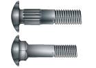 Metric Carriage Bolts