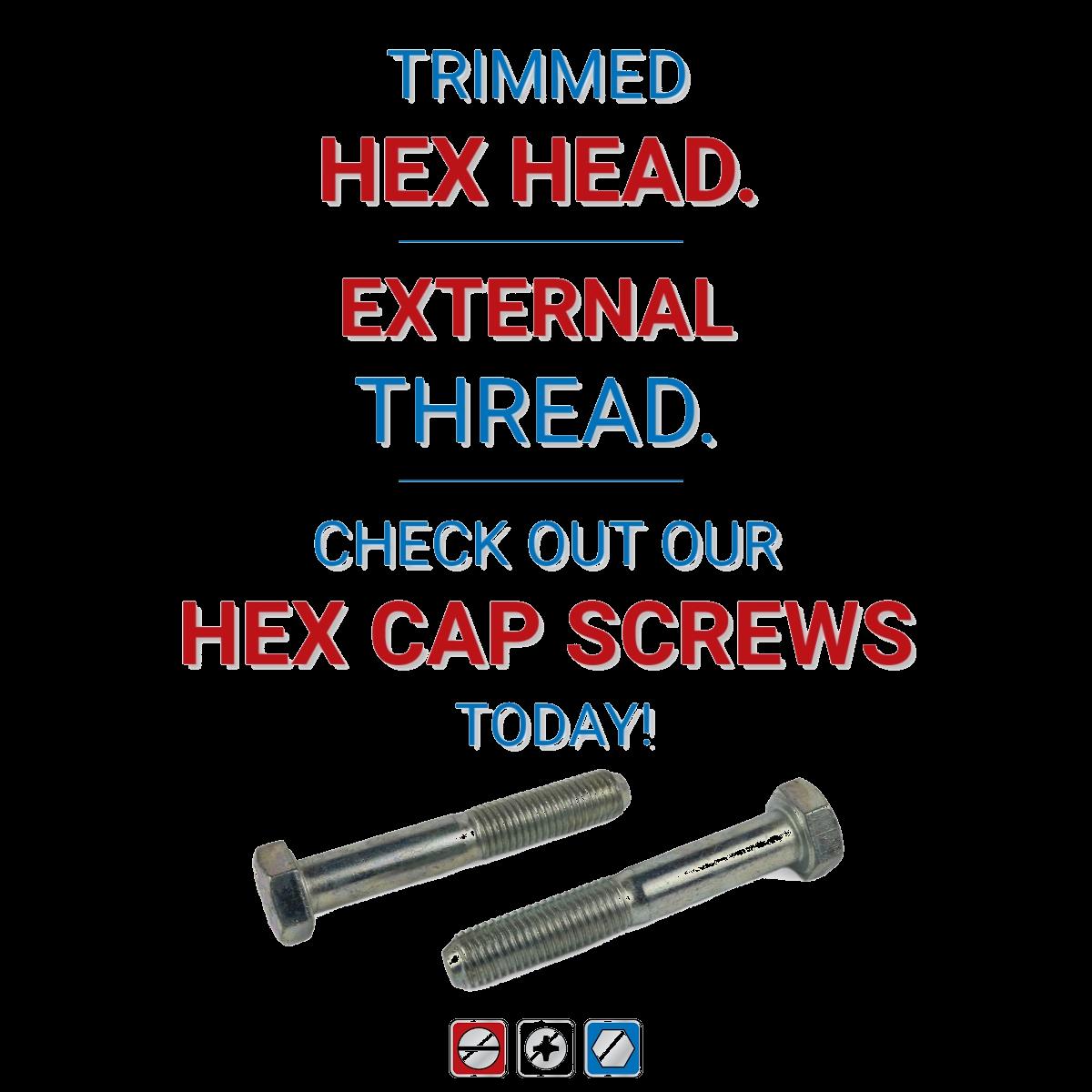 Hex Cap Screws