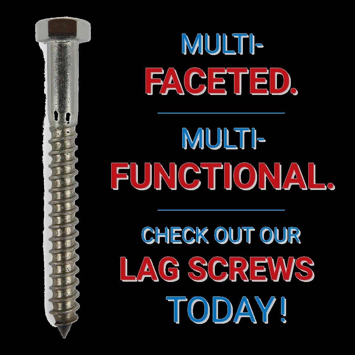 Multi Faceted Lag Screws
