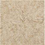 A Coastal Sandy Linen Finish Over Richly Grained White Oak Veneers and Hardwood Solids