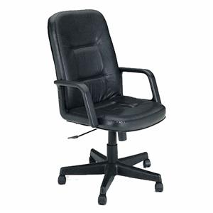 Acme Furniture Andrew Executive Leather Office Chair on Casters