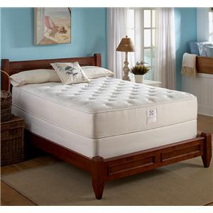 Sealy Comfort Series Cedar Point Queen Memory Foam Mattress Set