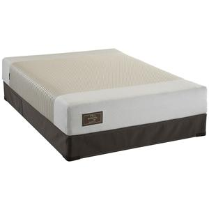Sealy Embody Perspective Twin Latex Mattress Set