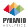 Pyramid Analytics - Business Intelligence
