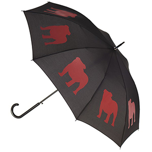 San Francisco Umbrella Company