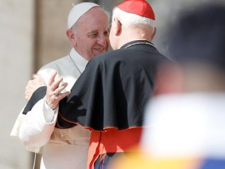 A Swiss Guard is seen as Pope Francis embraces a cardinal during his general audience in St. Peter's Square at the Vatican Sept. 18. (CNS photo/Paul Haring)