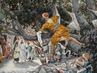 'Zacchaeus in the Sycamore Awaiting the Passage of Jesus' (Zachée sur le sycomore attendant le passage de Jésus) by James Tissot