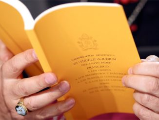 A copy of the apostolic exhortation 'Evangelii Gaudium' ('The Joy of the Gospel') by Pope Francis is seen during a news conference at the Vatican Nov. 26. (CNS photo/Alessandro Bianchi