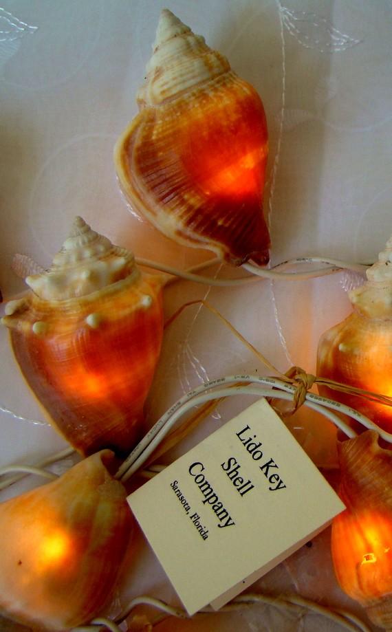 conch lights