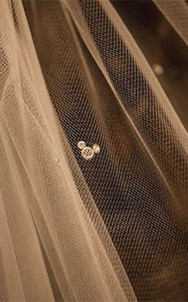 Hidden Mickey Veil