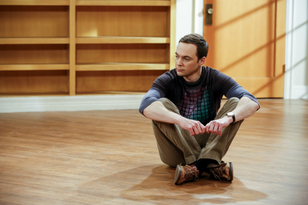 BIG BANG THEORY Recap Gyroscopic Collapse Sheldon